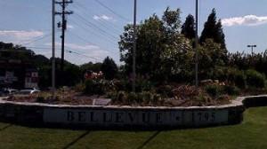 bellevue tn movers