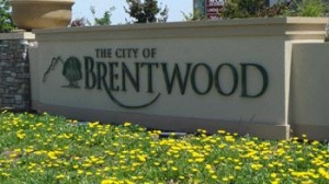 brentwood tn movers